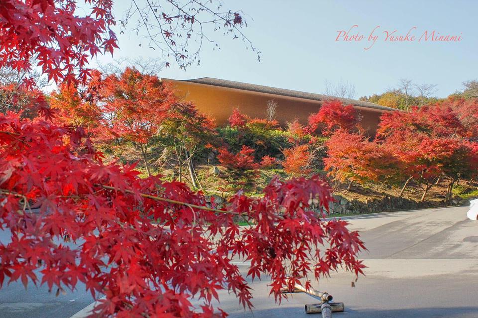 【福山市紅葉スポット】福山でオススメ!2017秋の紅葉をみるなら神勝禅寺/広島県福山市