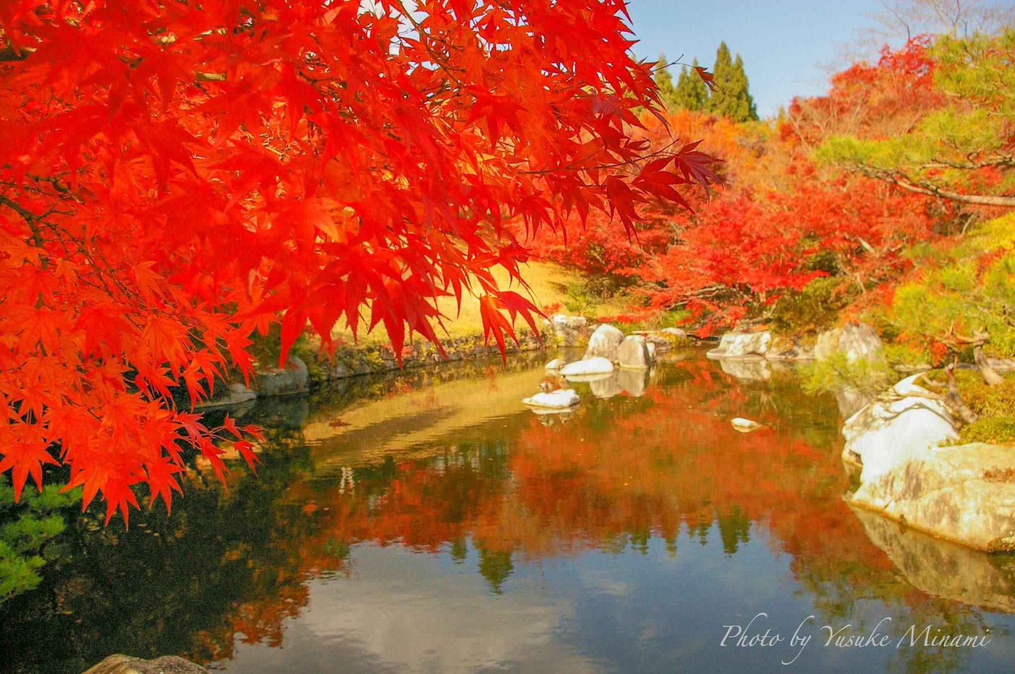 【秋の庭園】2018三景園の紅葉の見ごろや夜間ライトアップはいつ?/広島県三原市 【観光スポット】