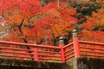 【紅葉】井原市の2017紅葉スポットは天神峡!/岡山県井原市