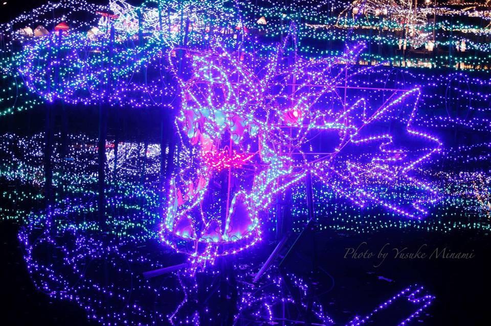 【光る大蛇】 ドラゴンイルミネーション登場!!備北丘陵公園イルミネーション ひばの里/広島県庄原市