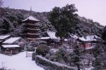【雪の国宝・明王院】 白銀に染まる明王院雪景色2017/広島県福山市草戸町