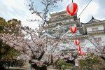 【2017福山城公園の桜】 広島県福山市でおすすめの花見スポットはここだ!!/広島県福山市