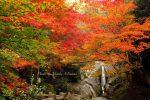 【紅葉スポット2017】広島、福山や尾道、三原、世羅など秋の紅葉を巡るならここがおすすめ!