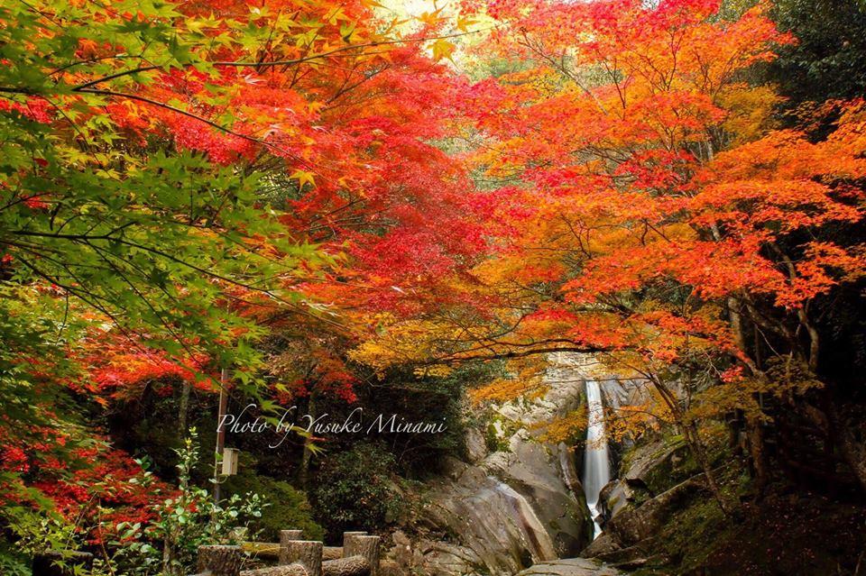 【紅葉スポット2018】広島、福山や尾道、三原、世羅、三次など秋の紅葉を巡るならここがおすすめ!