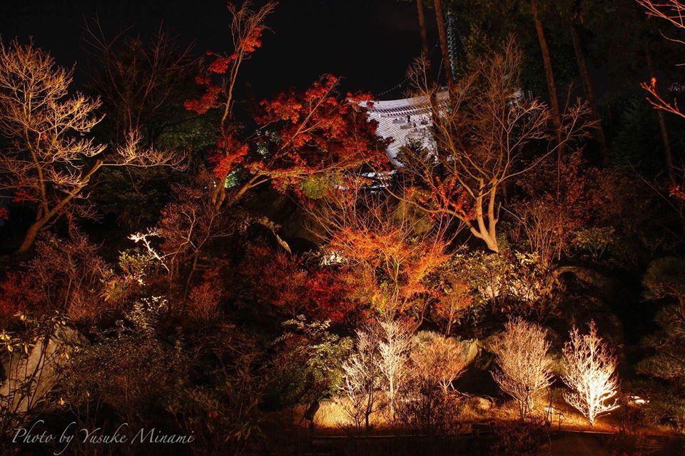 神勝禅寺の紅葉ライトアップ2018は11月の週末に開催!夜の紅葉景色はどんな感じ!?/広島県福山市