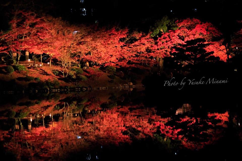 【広島紅葉スポット】名勝縮景園の紅葉ライトアップ2018は11月23日から12月2日まで/広島県広島市