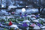 冬の備北丘陵公園で雪遊び!イルミネーション点灯前の雪景色はどんな感じ?/広島県庄原市