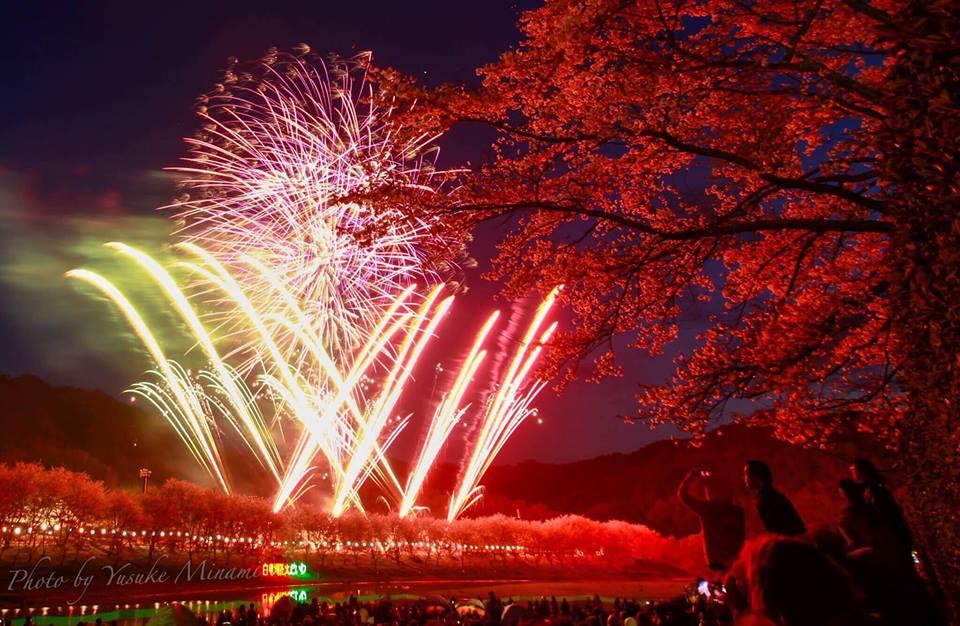 【白竜湖花火大会2018】桜と花火のコラボレーションin大和/広島県三原市