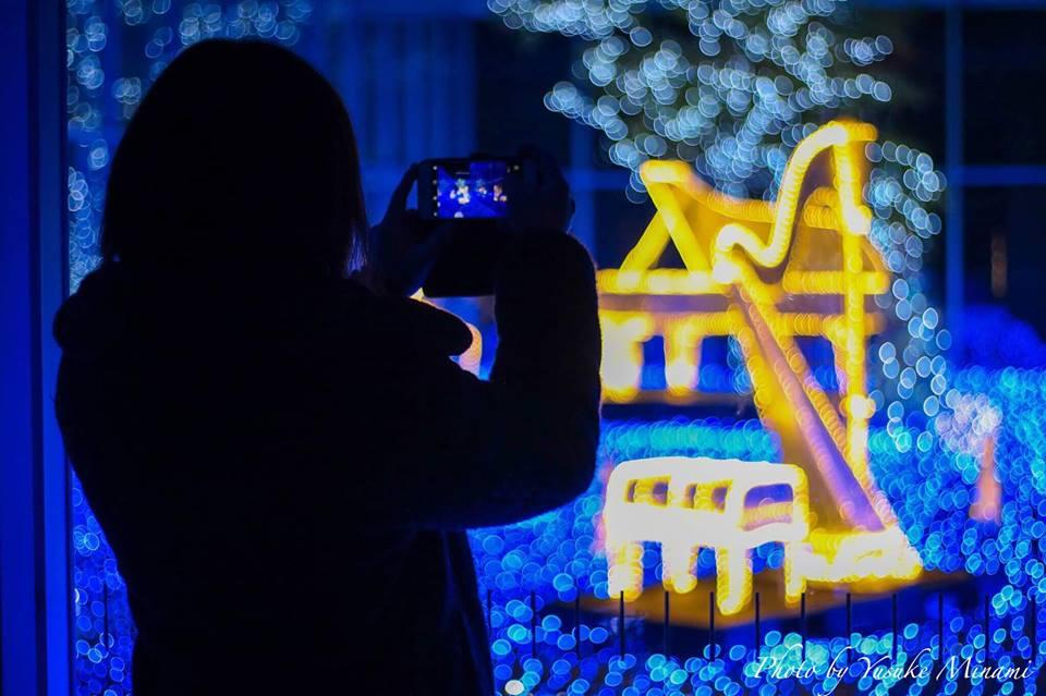 クリスマスにオススメ!冬ホタルとポポロイルミネーション!/広島県三原市