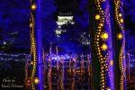 【福山城あかりまつり】2018年12月22日から2019年1月5日まで福山城のイルミネーション開催!!/広島県福山市 【イルミネーション】
