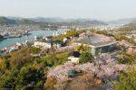 【週末お花見情報】 桜はまだ間に合う?2017花見スポット千光寺公園/広島県尾道市