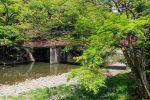 【井原市スポット】爽快!!初夏に新緑があふれる天神峡!!/岡山県井原市芳井