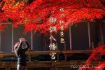 【秋の御調八幡宮】三原市で紅葉狩り!名所の神社を散策してみよう!/広島県三原市