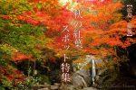 【広島紅葉スポット2020】福山市や尾道市、三原市、世羅、三次市など秋の紅葉を巡るならここがおすすめ!