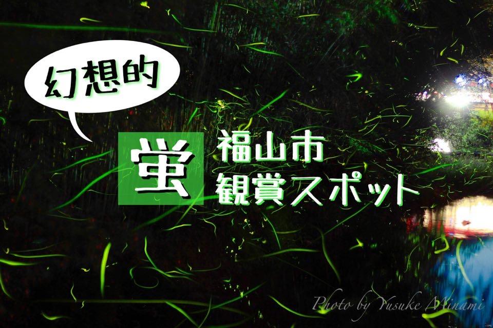 【福山市蛍スポット3選】ホタルを見れる場所はどこ??観測おすすめスポットを紹介!!/広島県福山市
